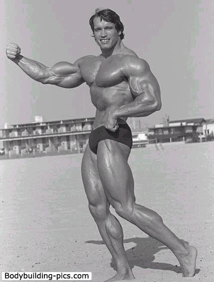 Arnold_Schwarzenegger_874
