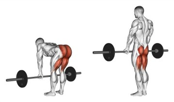 5 Best Exercises for Back- Deadlift