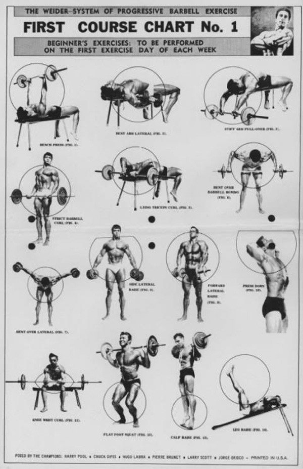 the weider system of progressive barbell exercise  u2013 physical culture study