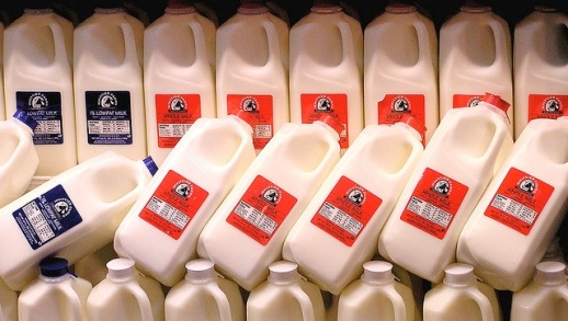 whole-milk-jugs