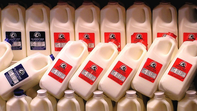 whole-milk-jugs.jpeg