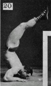 Tiger-Bend